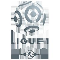 Ligue 1 – Kval